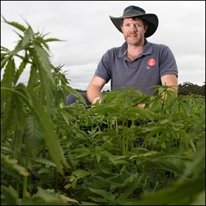 Ian Chamley in a hemp field