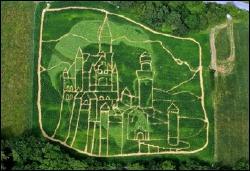 Hemp Labyrinth